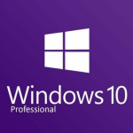 Windows Pro 10 32-bit/64-bit Russian USB (FQC-09119)
